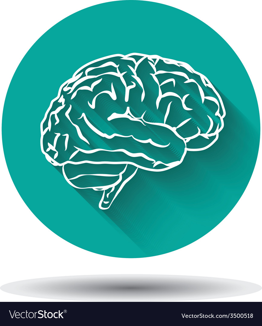 Human brain icon flat with shadow vector | Price: 1 Credit (USD $1)