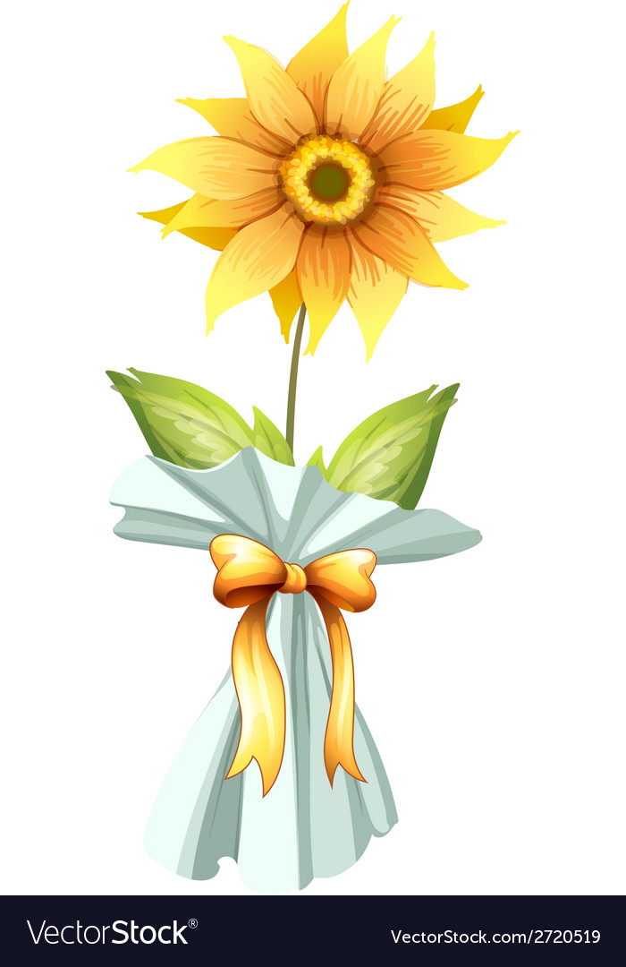 A sunflower vector | Price: 1 Credit (USD $1)