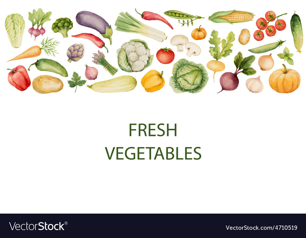 Set of watercolor vegetables vector | Price: 1 Credit (USD $1)