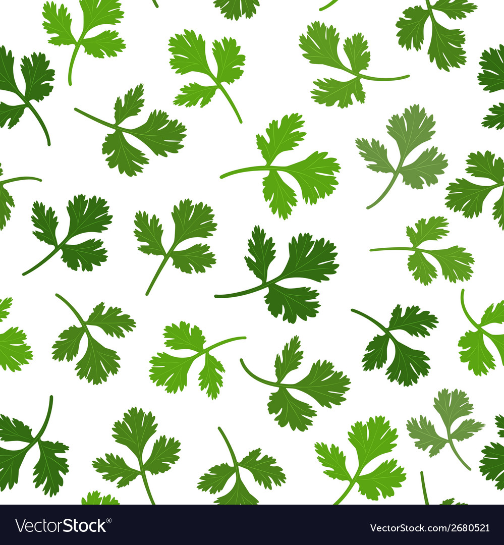 Seamless texture of parsley vector | Price: 1 Credit (USD $1)