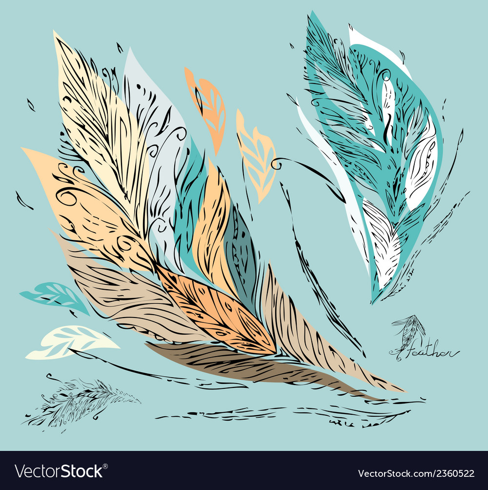 Feather coupon vector | Price: 1 Credit (USD $1)