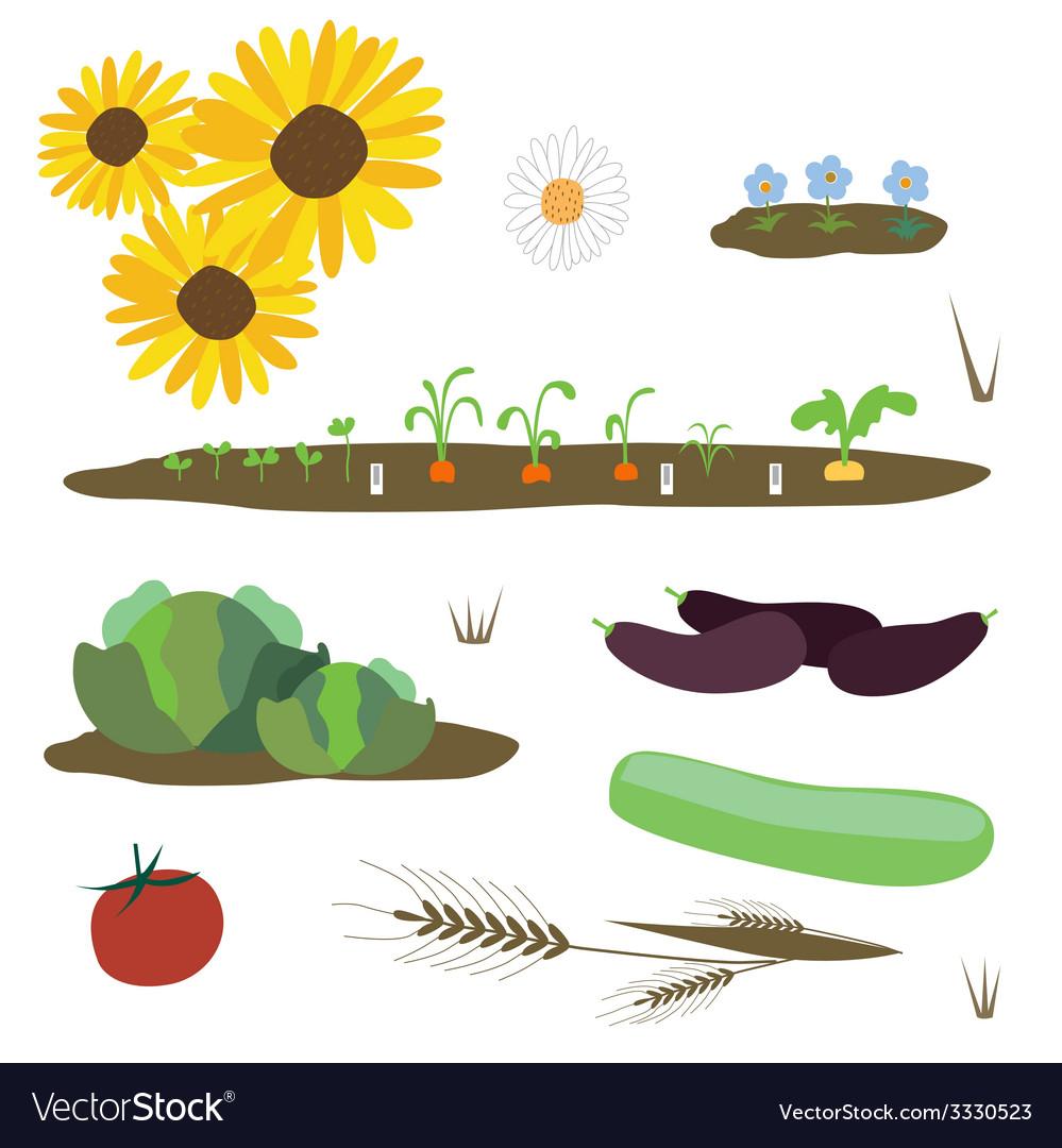 Rural plants set vector | Price: 1 Credit (USD $1)