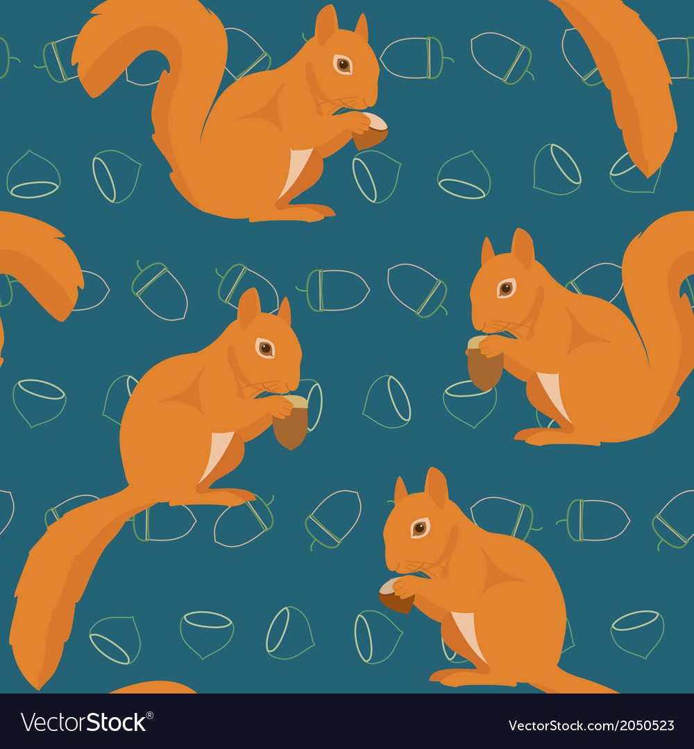 Seamless pattern with squirrels vector | Price: 1 Credit (USD $1)