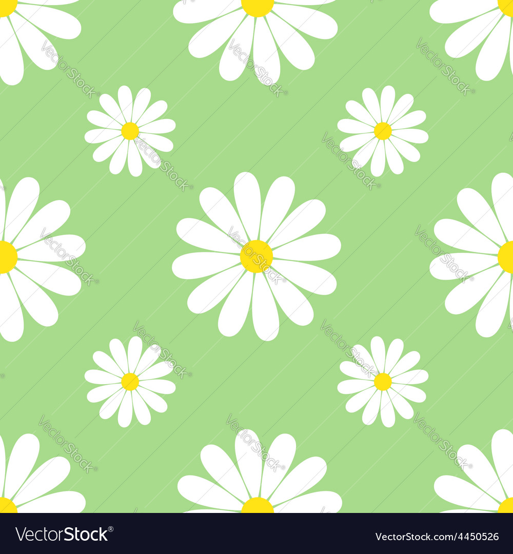 Green background seamless pattern with chamomiles vector