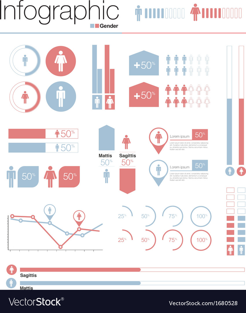 Infographics gender design elements vector | Price: 1 Credit (USD $1)
