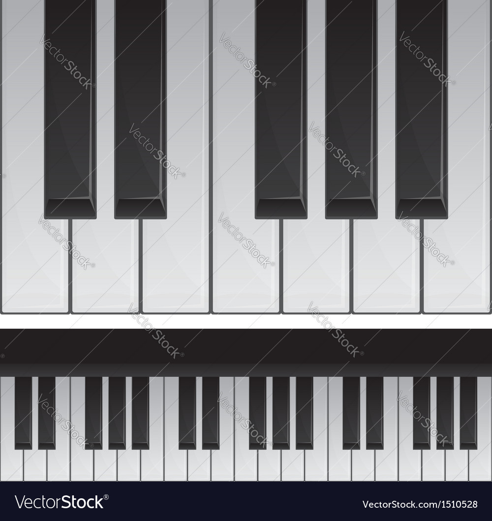 Seamless piano keys vector | Price: 1 Credit (USD $1)
