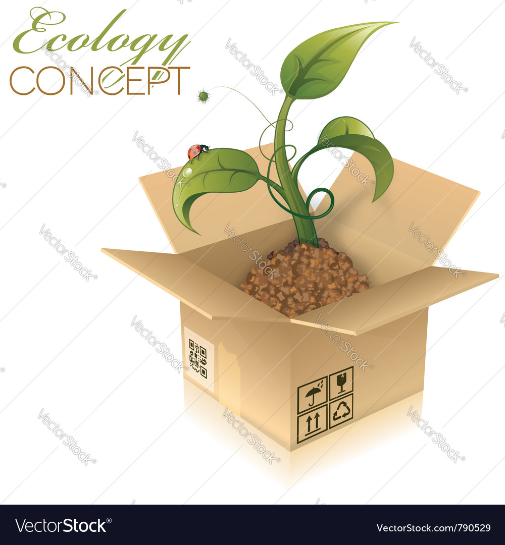 Open cardboard box vector | Price: 1 Credit (USD $1)