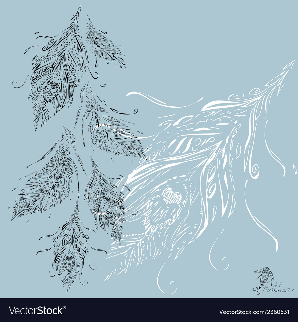 Feathers grey background white vector | Price: 1 Credit (USD $1)
