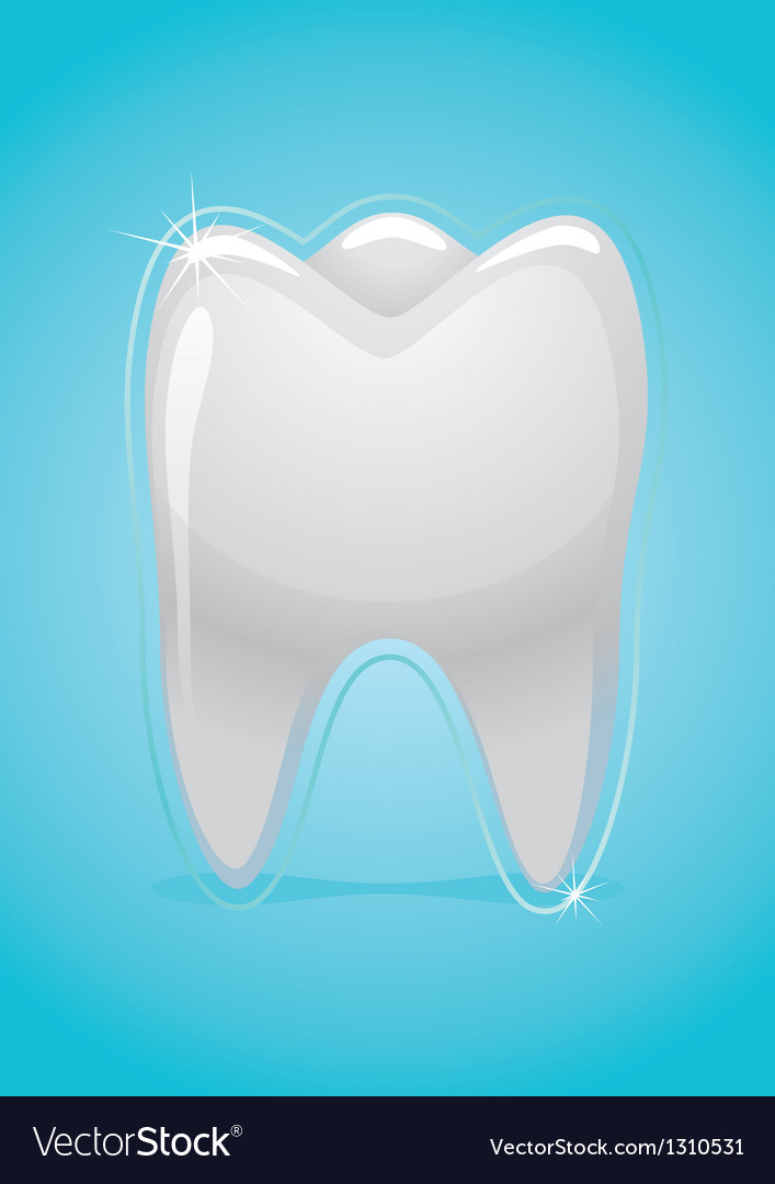 Health of teeth vector | Price: 1 Credit (USD $1)