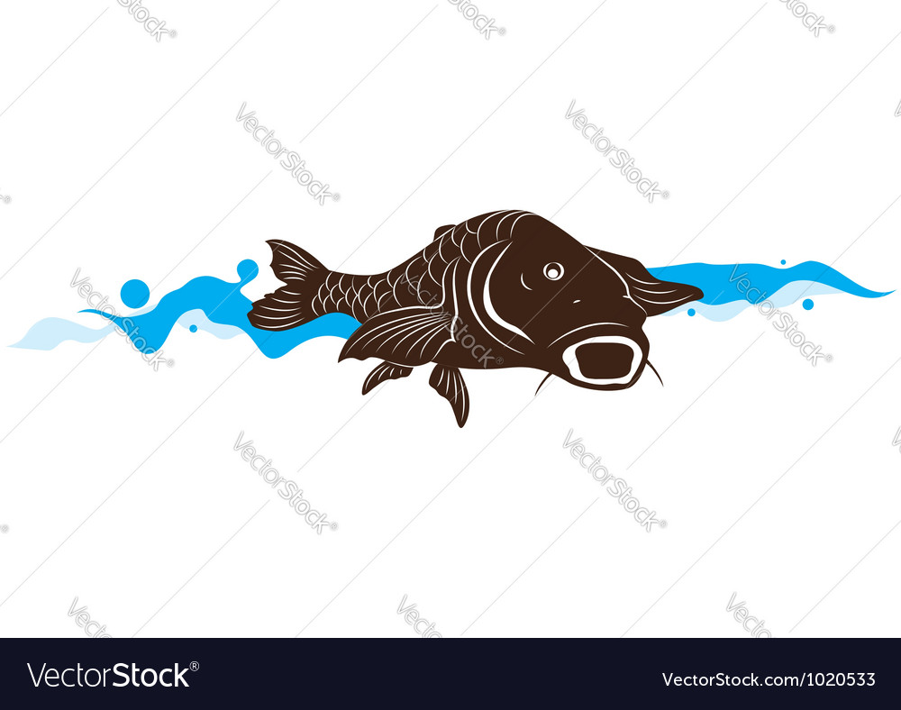 Carp fish vector | Price: 1 Credit (USD $1)