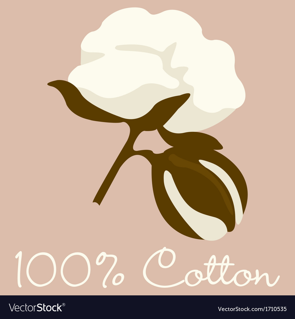 100 cotton sign in format vector | Price: 1 Credit (USD $1)