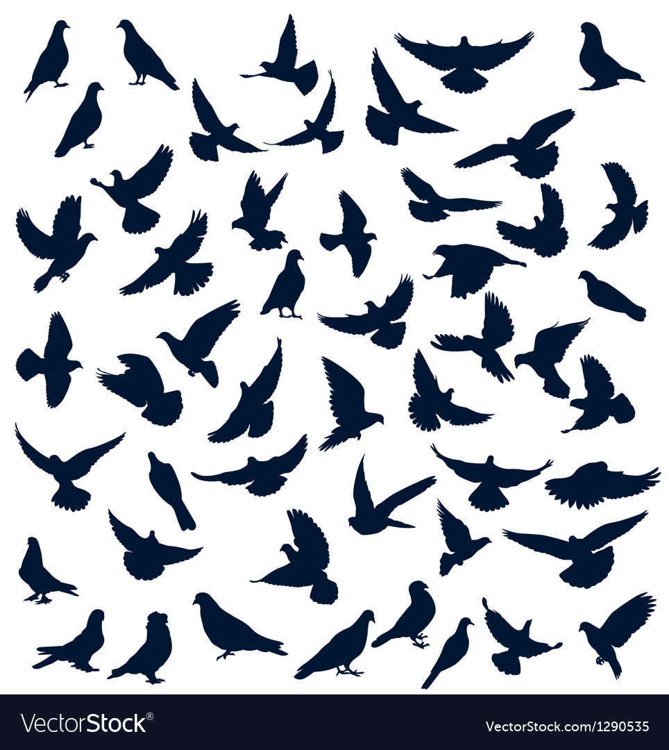 Dove silhouettes vector | Price: 1 Credit (USD $1)