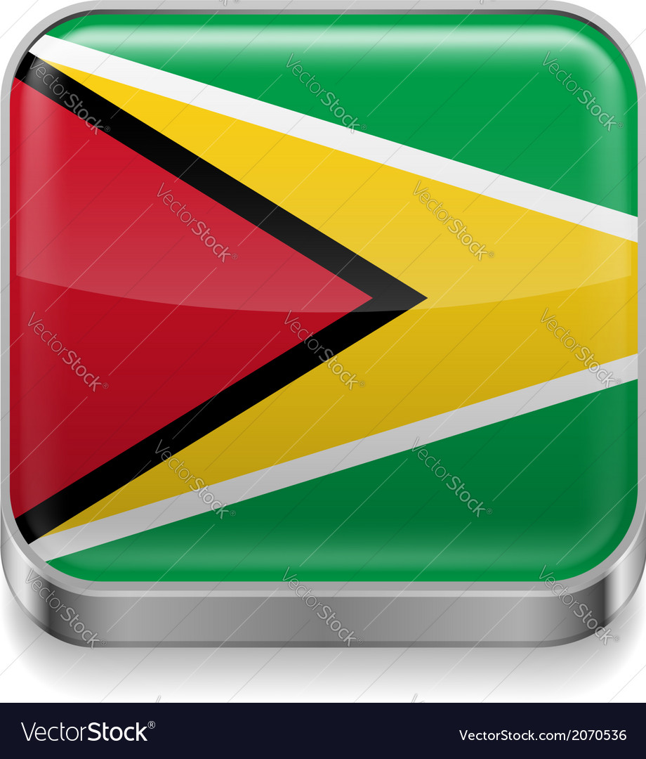 Metal icon of guyana vector | Price: 1 Credit (USD $1)