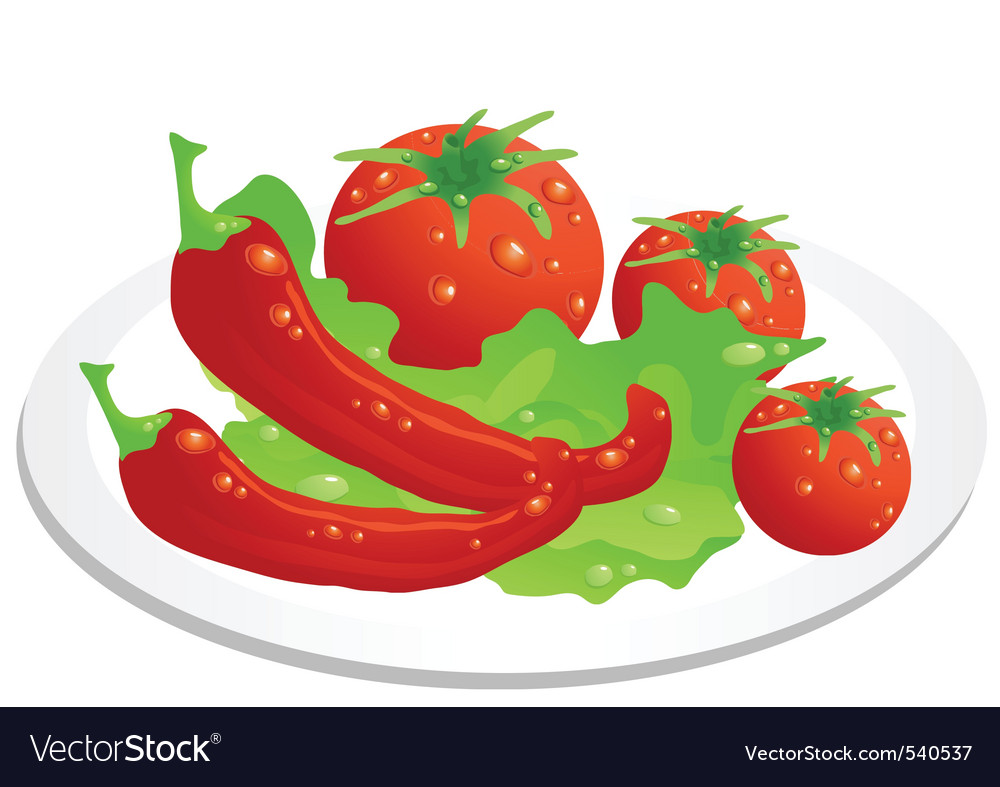 Vegetable plate vector | Price: 1 Credit (USD $1)