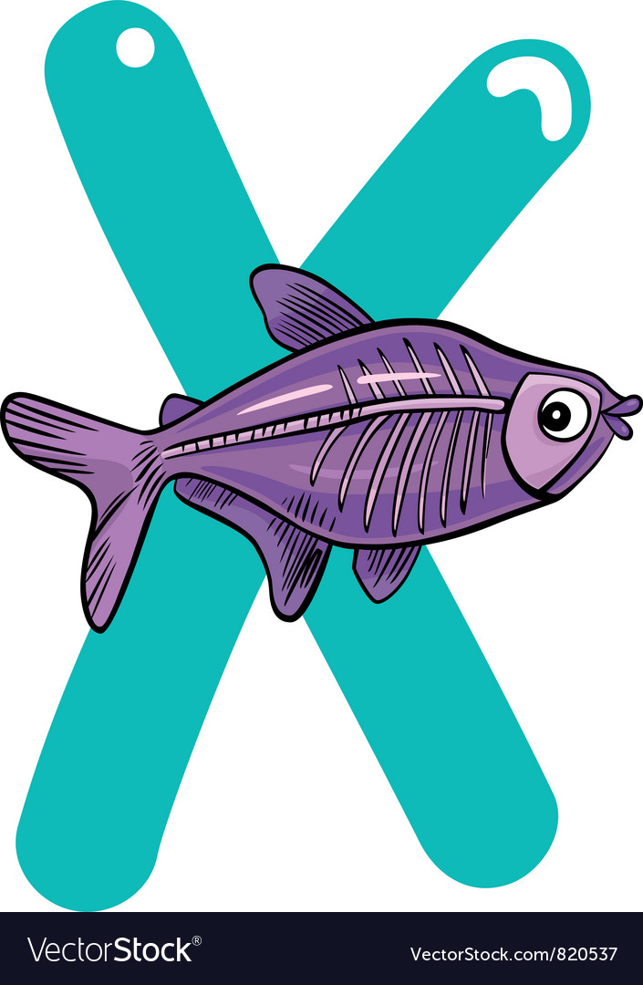 X for x-ray fish vector | Price: 3 Credit (USD $3)