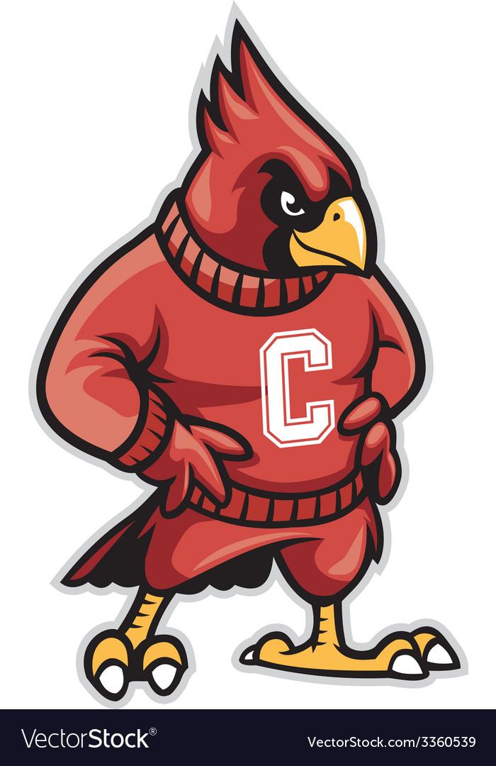 Cardinal school mascot vector | Price: 3 Credit (USD $3)