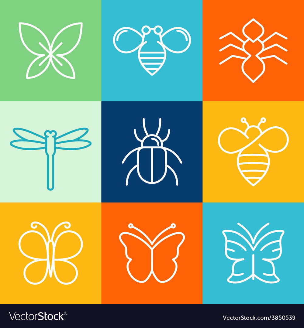 Insects and bugs vector | Price: 1 Credit (USD $1)