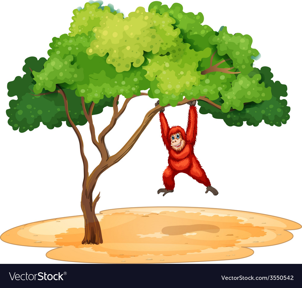 A gorilla hanging under the tree vector | Price: 3 Credit (USD $3)