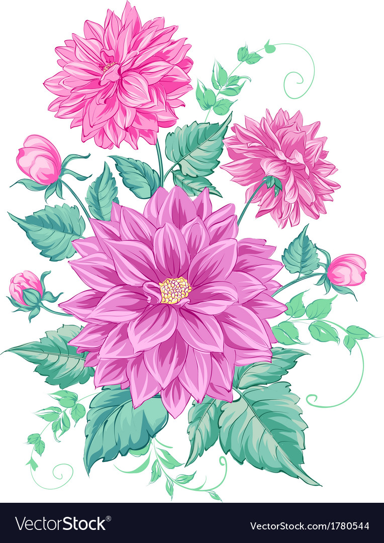 Chrysanthemum isolated design vector | Price: 1 Credit (USD $1)
