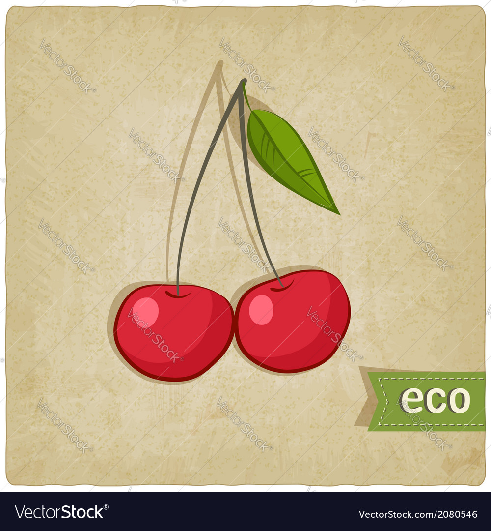 Fruit eco old background vector | Price: 1 Credit (USD $1)