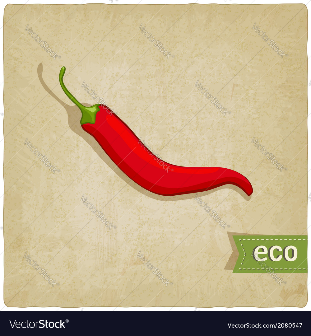 Vegetable eco old background vector | Price: 1 Credit (USD $1)