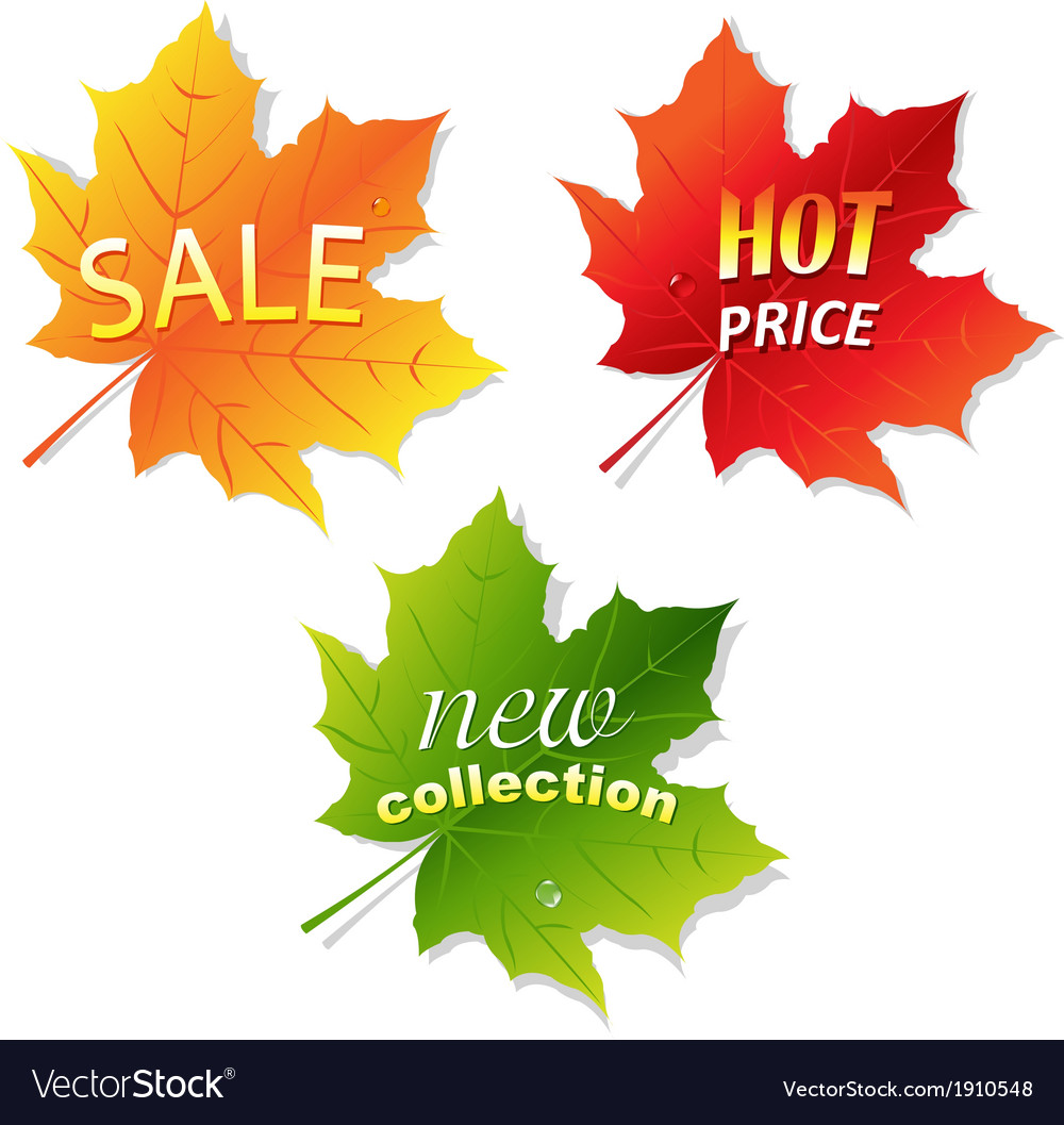 Collection sale leaves vector | Price: 1 Credit (USD $1)