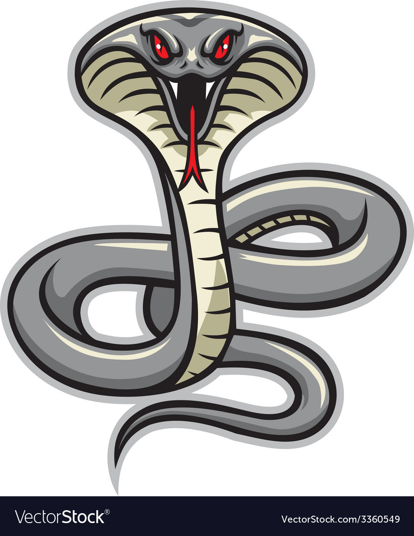 Cobra snake mascot vector | Price: 3 Credit (USD $3)