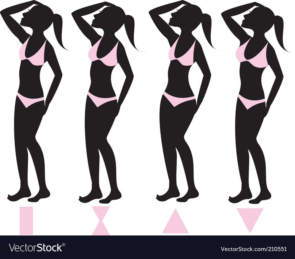 Body types vector | Price: 1 Credit (USD $1)