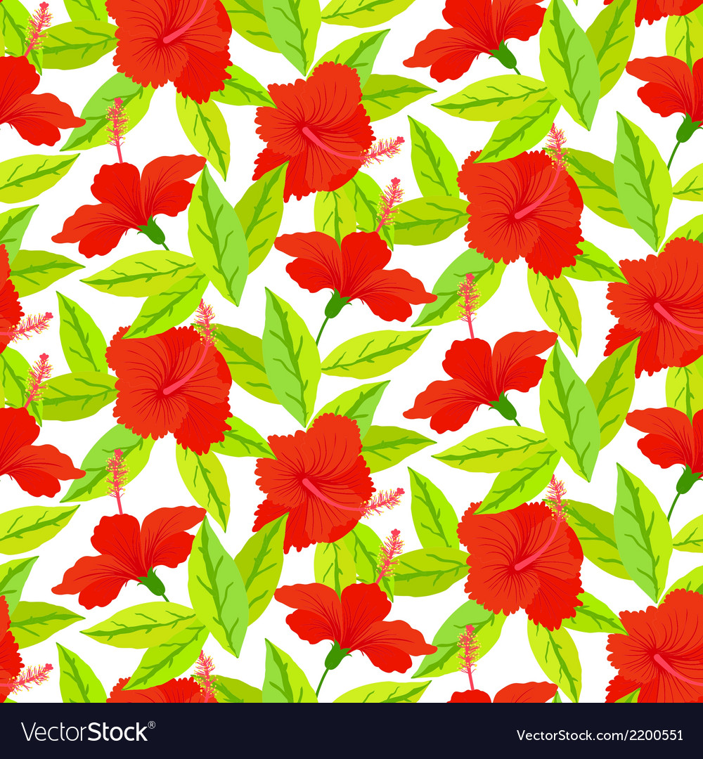 Tropical vintage pattern with red hibiscus flowers vector | Price: 1 Credit (USD $1)