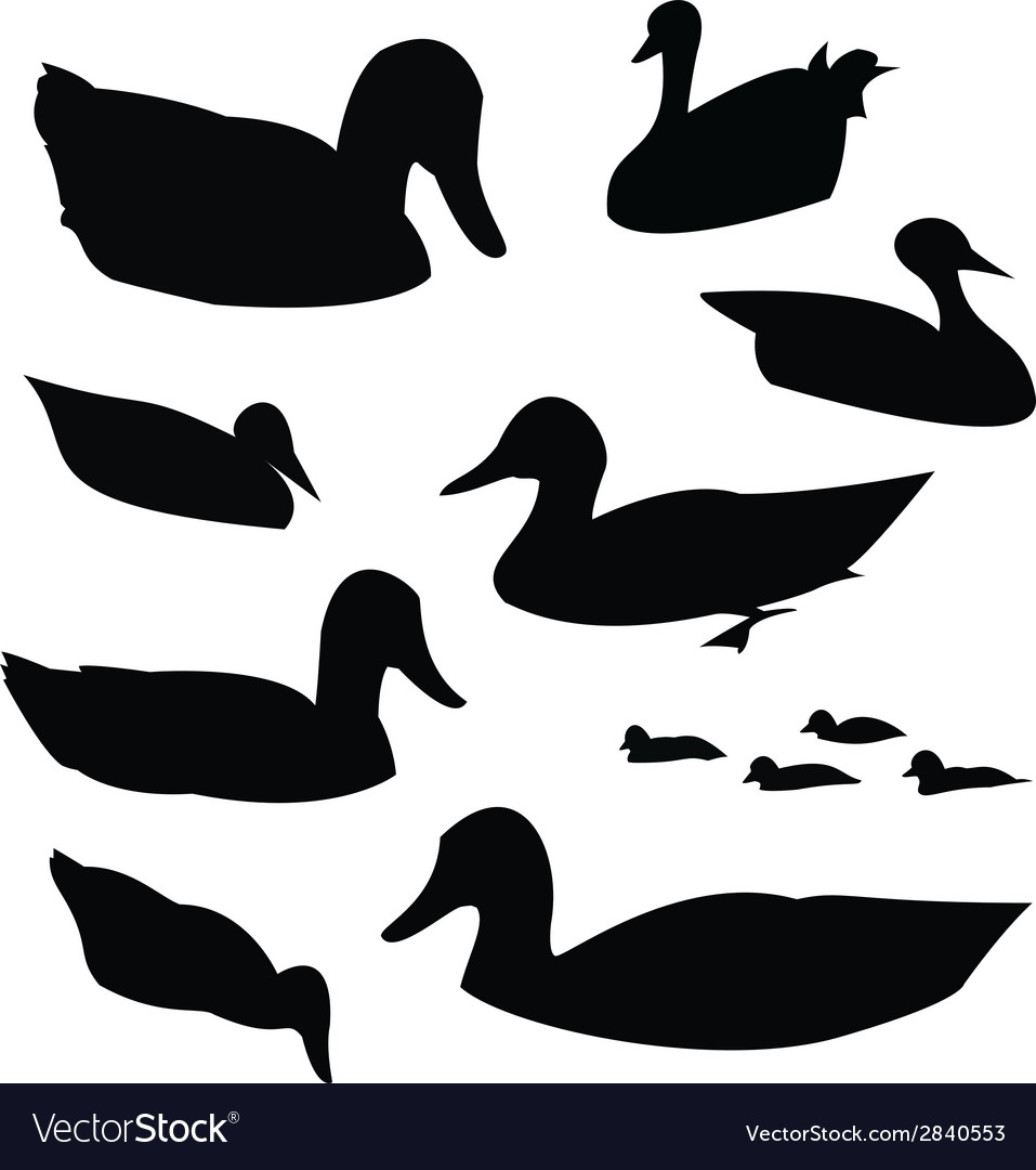 Duck silhouette animal clip art vector | Price: 1 Credit (USD $1)