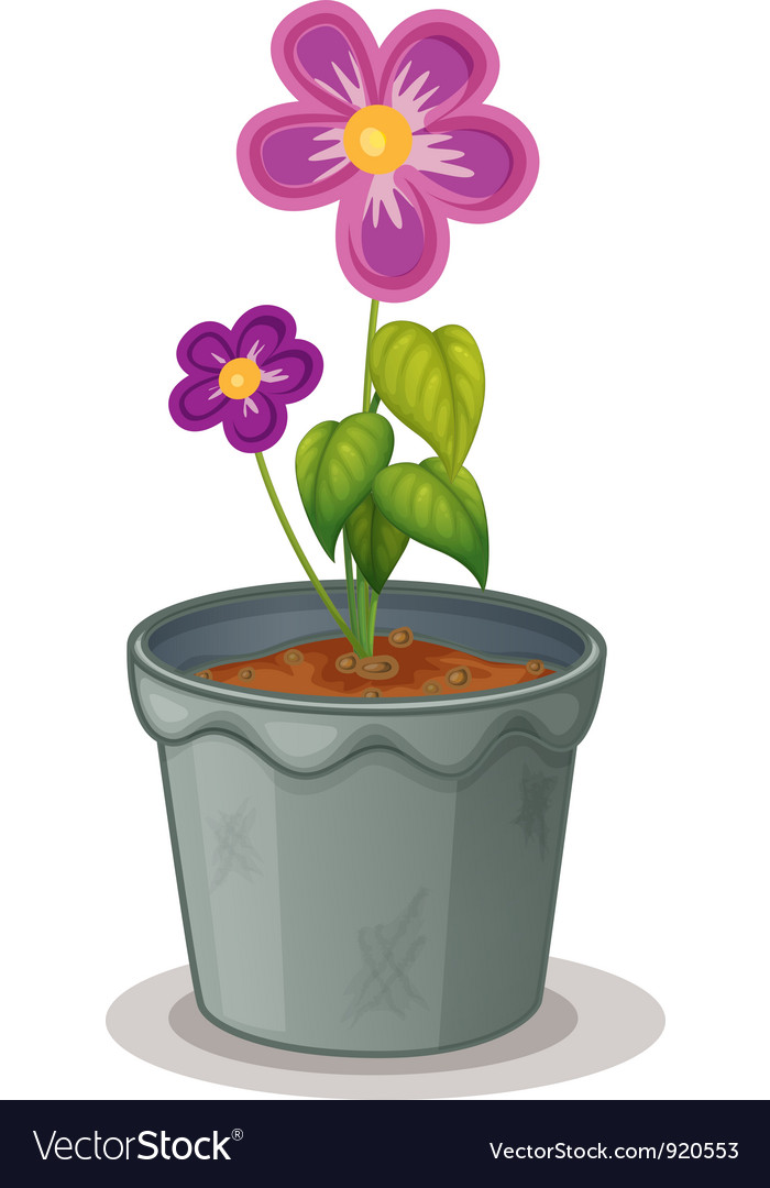 Pot plant vector | Price: 1 Credit (USD $1)