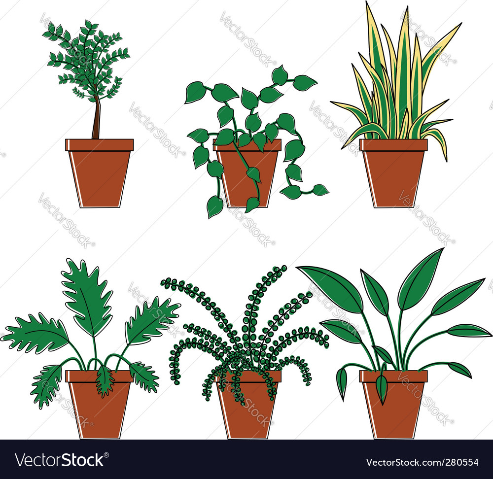 Six plants in pots vector | Price: 1 Credit (USD $1)