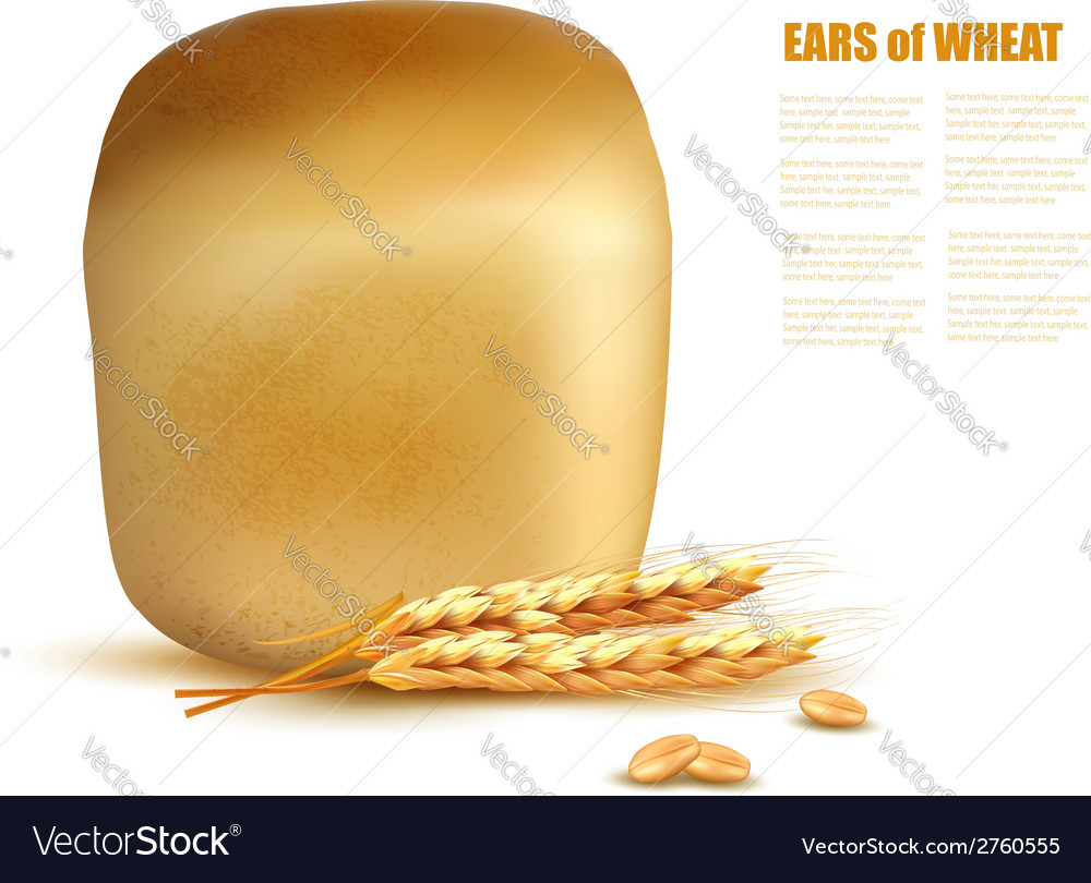 A loaf of bread with grain vector | Price: 1 Credit (USD $1)