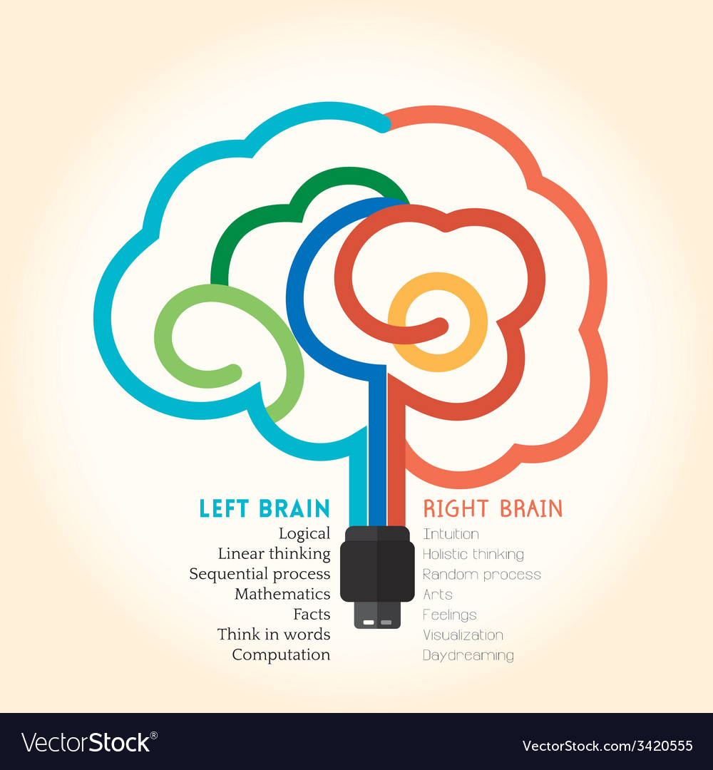 Left right brain function creative concept vector | Price: 1 Credit (USD $1)