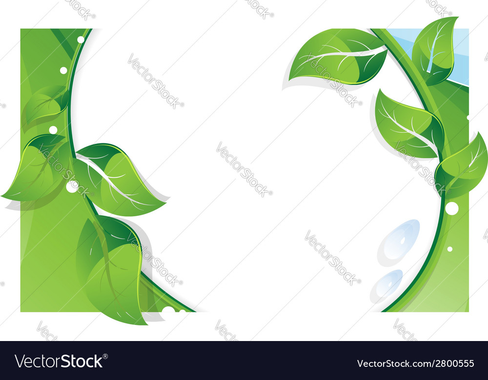 Summer branch with green leaves vector | Price: 1 Credit (USD $1)