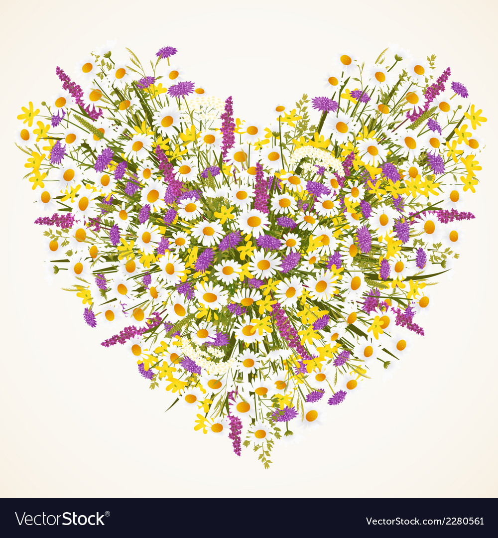 Wild flower heart vector | Price: 1 Credit (USD $1)
