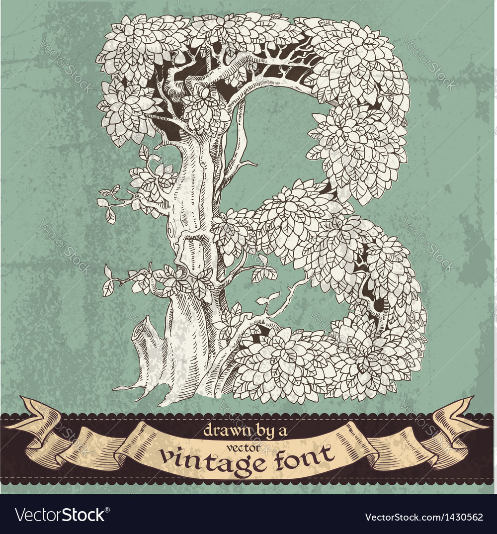 Magic grunge forest hand drawn by vintage font - b vector | Price: 1 Credit (USD $1)