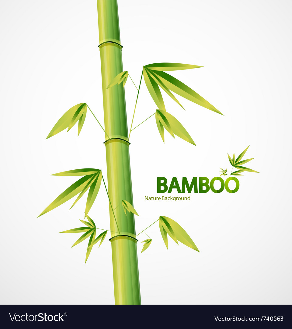 Bamboo stem abstract nature background vector | Price: 1 Credit (USD $1)
