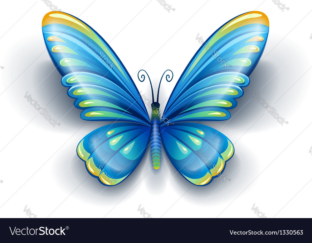Blue butterfly with color vector | Price: 1 Credit (USD $1)