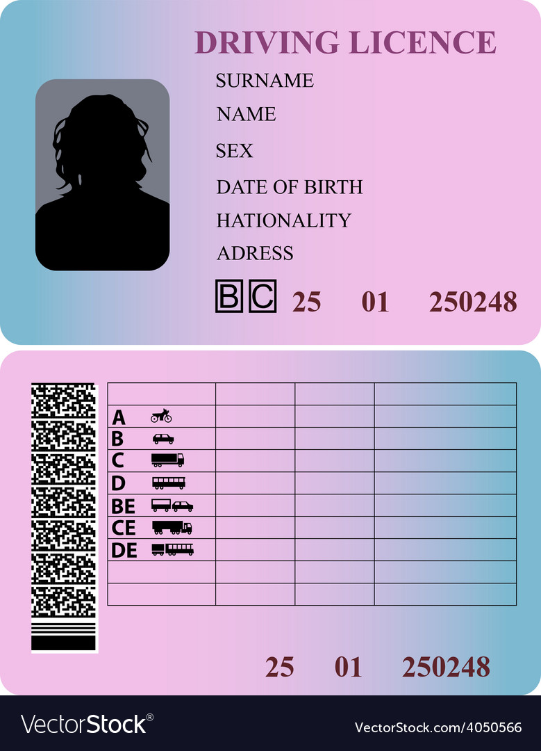 Driving license woman vector | Price: 1 Credit (USD $1)