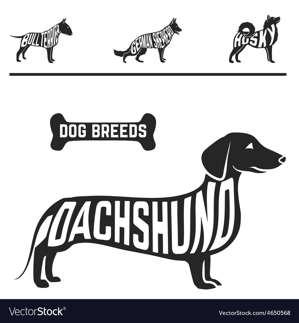 Isolated dog breed silhouettes set with names of vector | Price: 1 Credit (USD $1)