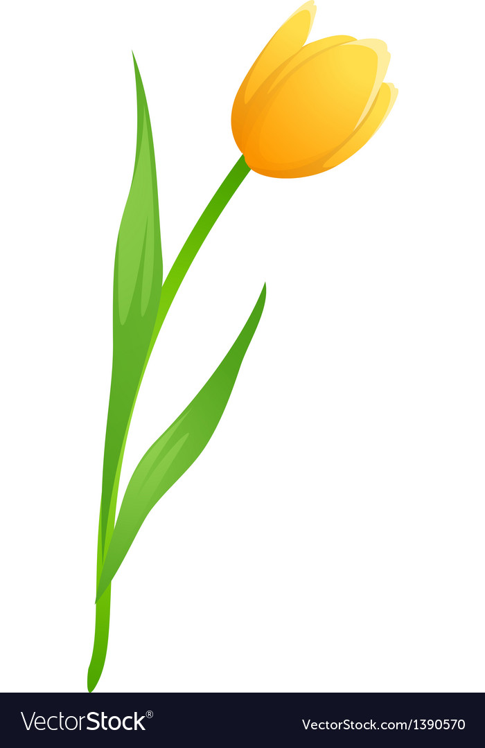 Icon tulip vector | Price: 1 Credit (USD $1)