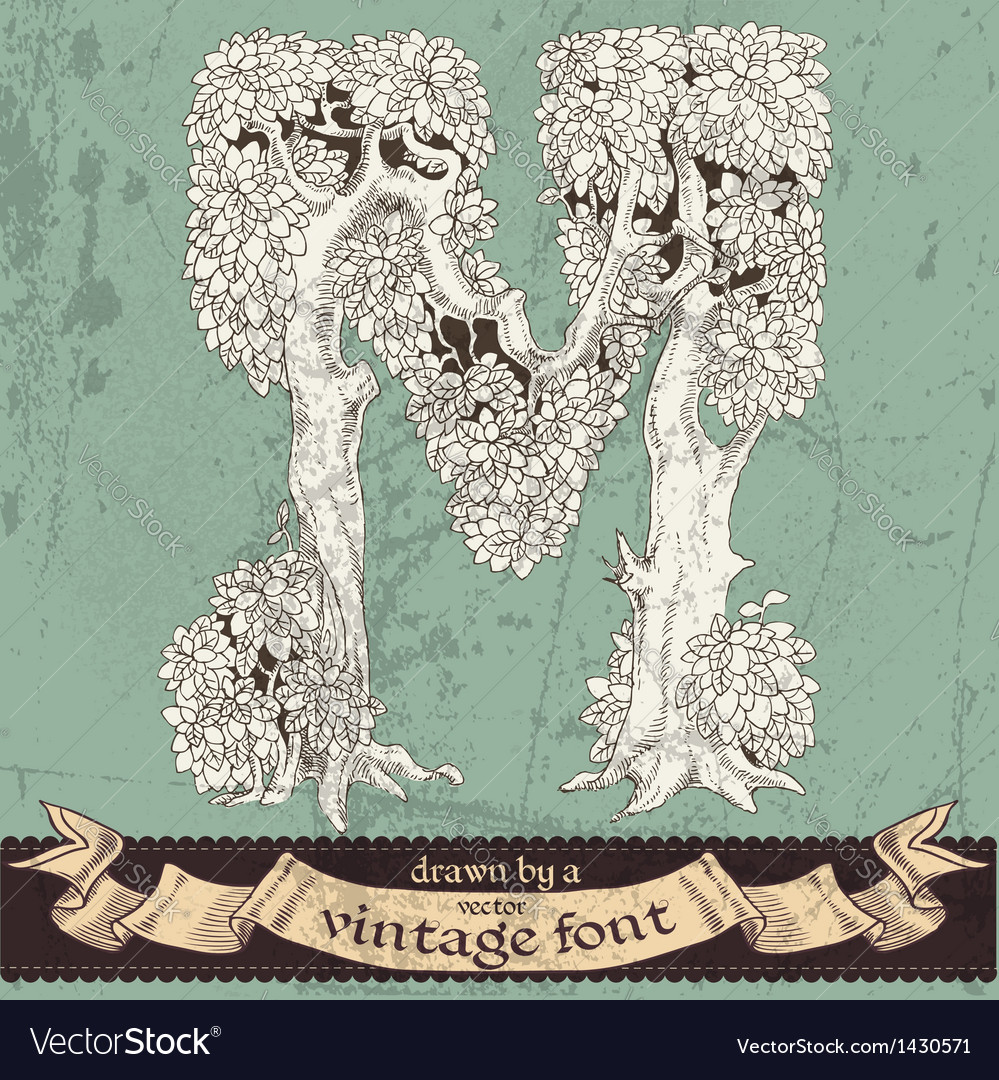 Magic grunge forest hand drawn by vintage font -m vector   Price: 1 Credit (USD $1)