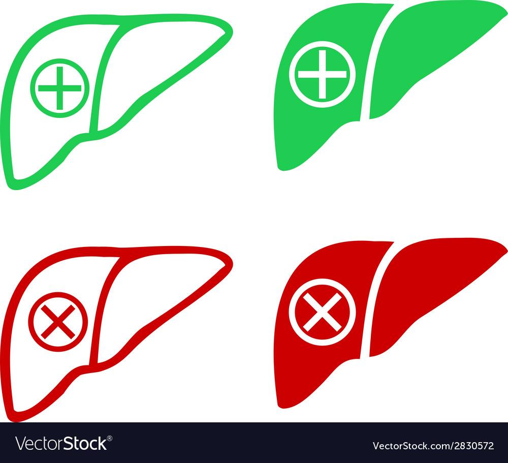 Human liver icon logo vector | Price: 1 Credit (USD $1)