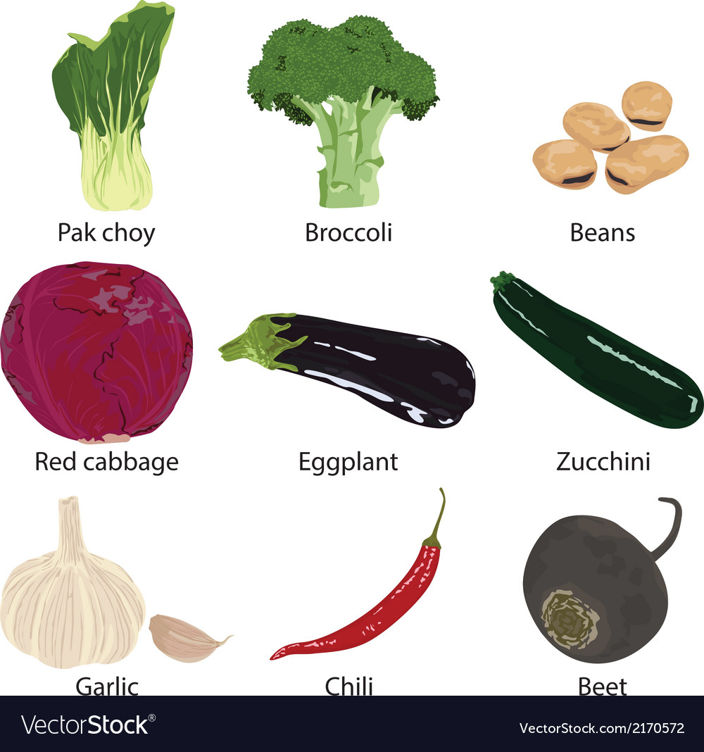 Set vegetables isolated vector | Price: 1 Credit (USD $1)