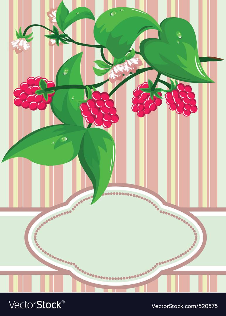 Sprig raspberry vector   Price: 1 Credit (USD $1)