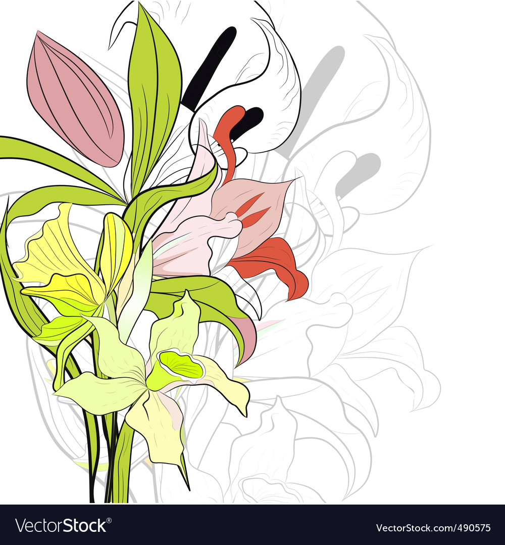 Spring background with lily flowers vector | Price: 1 Credit (USD $1)
