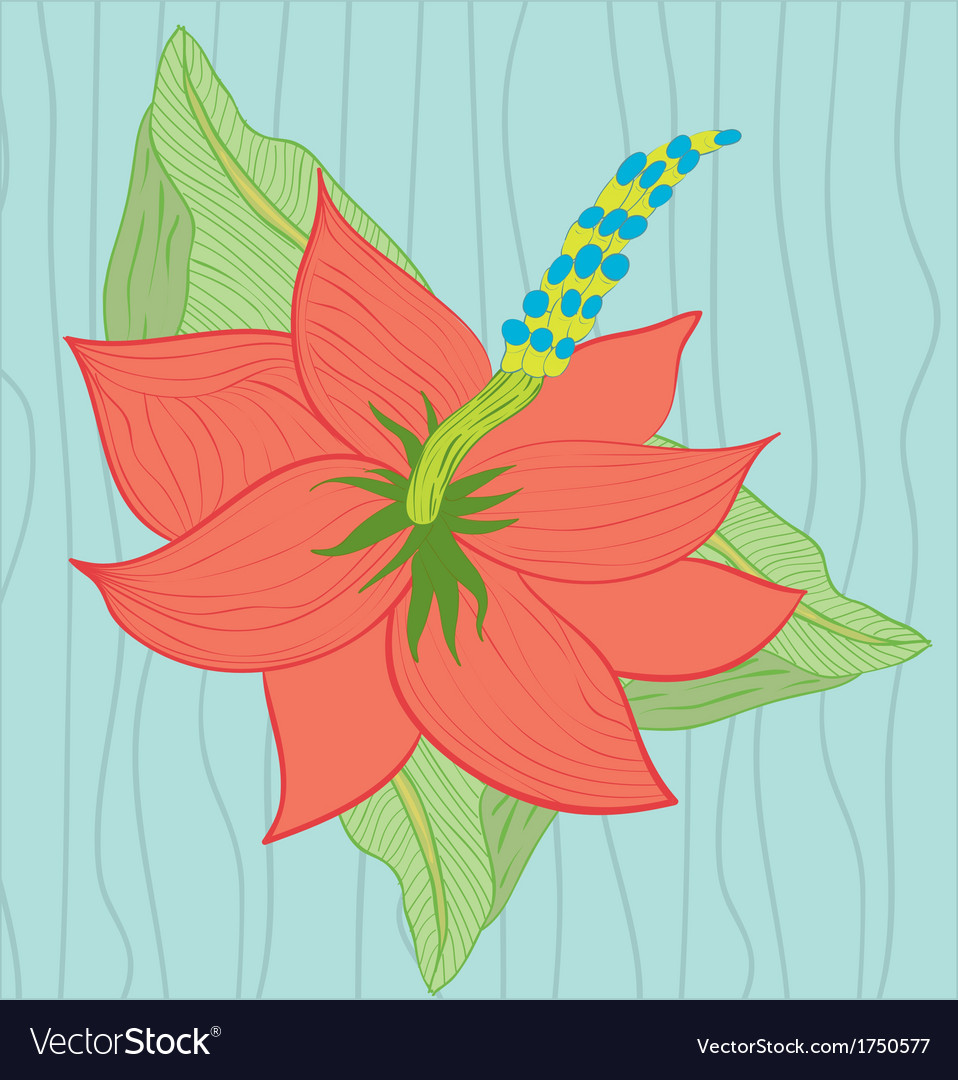 Hibiscus flower on the blue background vector | Price: 1 Credit (USD $1)