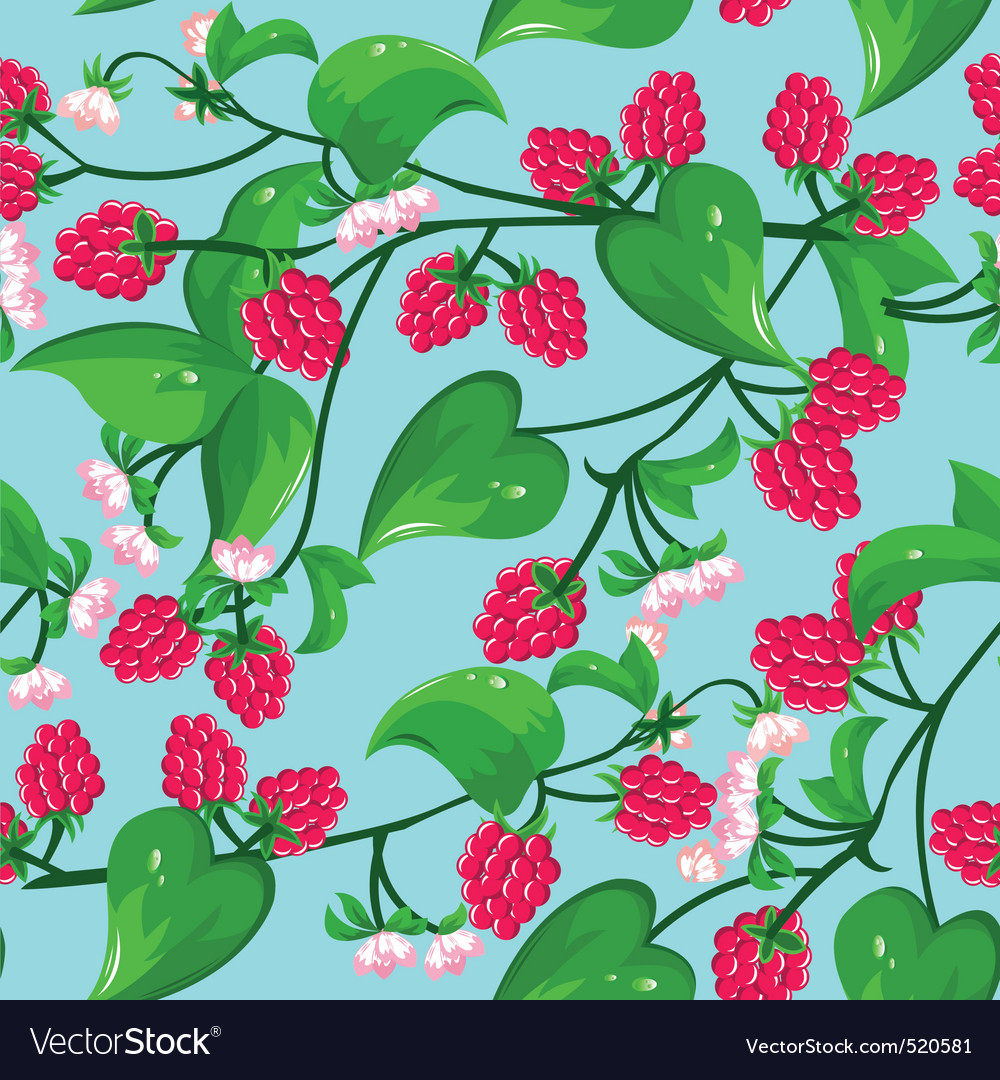 Raspberry seamless vector | Price: 1 Credit (USD $1)
