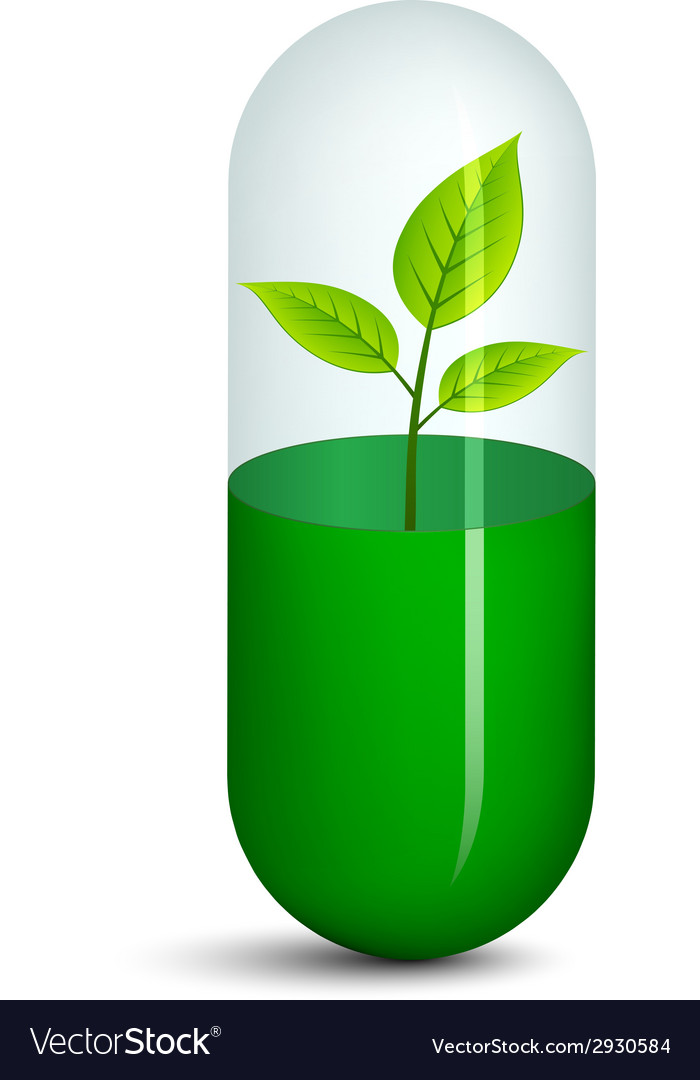 Pill with plant vector | Price: 1 Credit (USD $1)